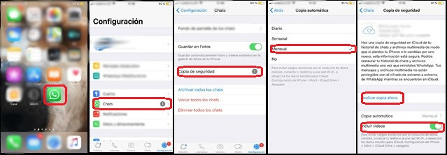Copia seguridad chat. WhatsApp Iphone